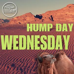 Hump Day Wednesday